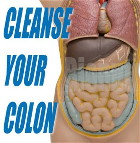 How Much Is A Detox For by The Colon Cleanse Has Become The New Penance Lorie Eber