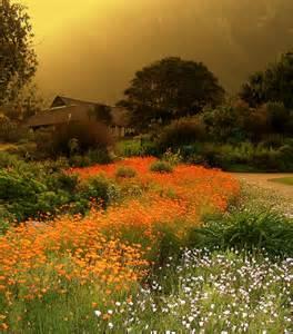 Kirstenbosch National Botanical Gardens Kirstenbosch National Botanical Garden Places