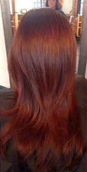 hair color 201 hair color trends fall 2014 fall hair color trends