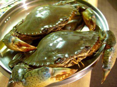 Kerang Di Superindo ciri ciri bahan makanan laut yang segar health liputan6