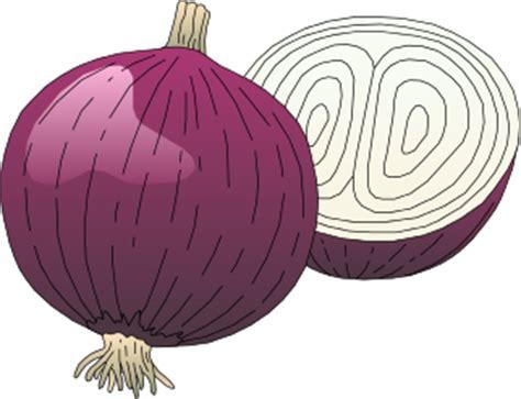 Vegetables onion purple food vegetables onion onion purple png html