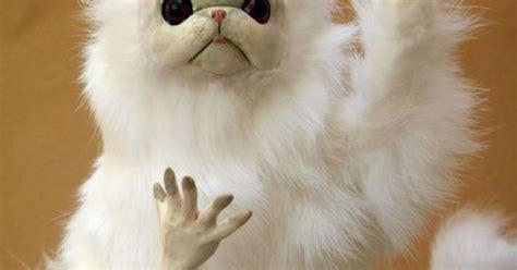 Persian Cat Meme - persian cat room guardian by anyaboz on etsy 60 00
