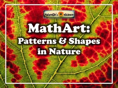 patterns in nature keep it simple science mathart introduction to patterns shapes in nature live