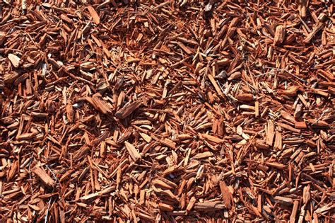 mulch wood chips 2000x1333 background image wallpaper or