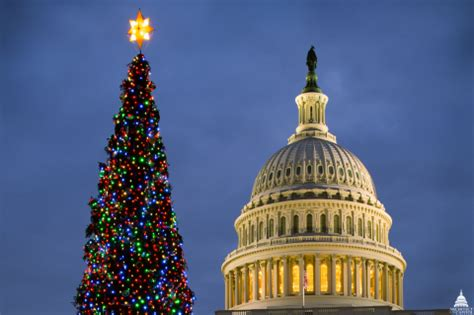 sacramento capital christmas decorations 2015 capitol tree will shine tonight architect of the capitol united states capitol