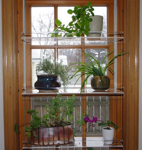 beautiful views plant shelves minnesotafromscratch