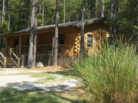 Cabins In Bismarck Ar by Leaf Spa Whirlpool Picture Of Country Charm Log