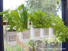Indoor bottle herb garden from recycled milk bottles grillo designs