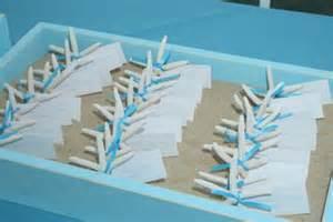 Beach wedding favors homemade wedding party favorsehow best wedding