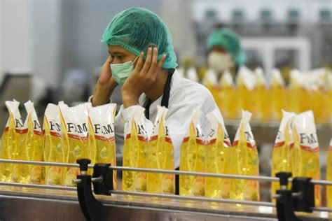 Minyak Goreng Kemasan Di ketentuan wajib kemasan minyak goreng diundur 2020