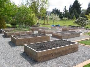 why you should raised veggie beds sustainable living