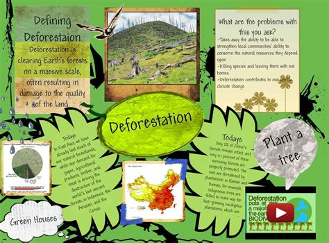 Causes And Effect Of Deforestation Essay by What Are The Causes And Effects Of Deforestation