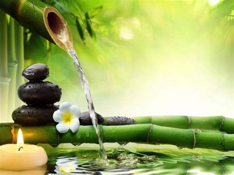 ayurveda spa  packages treatments  alleppey