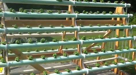 Herb Indoor Planter by A Frame Vertical Hydroponic Garden Grows 168 Plants Off