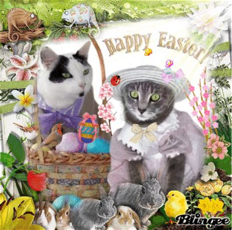 cat easter wallpaper happy easter cats picture 128599141 blingee com