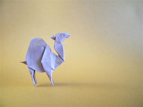 the world s best photos of camel and origami flickr hive