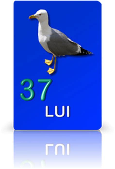 le carte gabbiano tarocchi gratuiti tarocchi gratis on line le carte dei