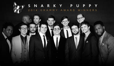 snarky puppy aoc artist of the week snarky puppy of cool festival