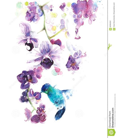 orchids and watercolor 95th birthday orchids the tropical flowers watercolor painting illustration handmade on white background