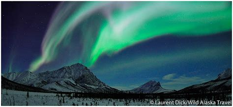 Aurora Borealis Viewing In Northern Alaska 187 Alaska365 Viewing Lights