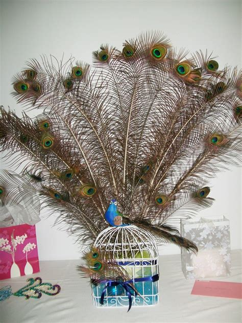 peacock decorations peacock party decorations kate s bachelorette party