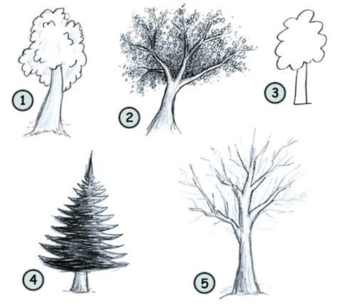 easy to draw tree how to draw trees