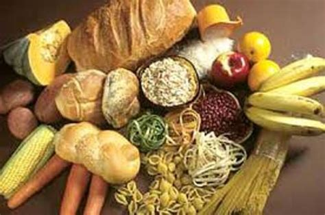 carbohydrates facts 10 facts about carbohydrates fact file