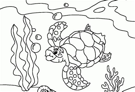 free coloring pages fish ocean animal coloring ocean coloring page ocean fish coloring