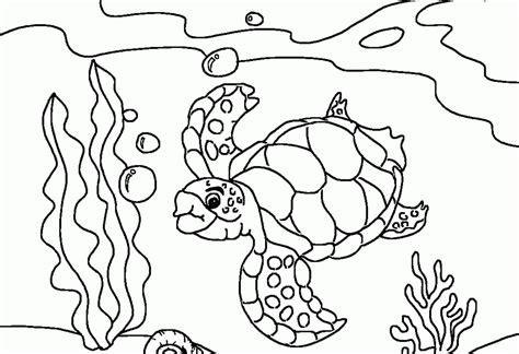 animal coloring ocean coloring page ocean fish coloring