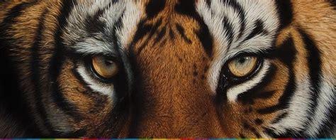 imagenes realistas ejemplos wildlife animales muy realistas por cristina penescu