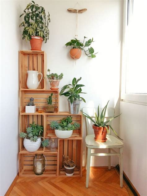 indoor greenery  freshen   dwelling place decohoms