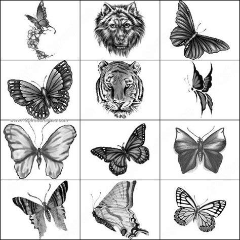 tiger pattern brush photoshop lion photoshop brush images