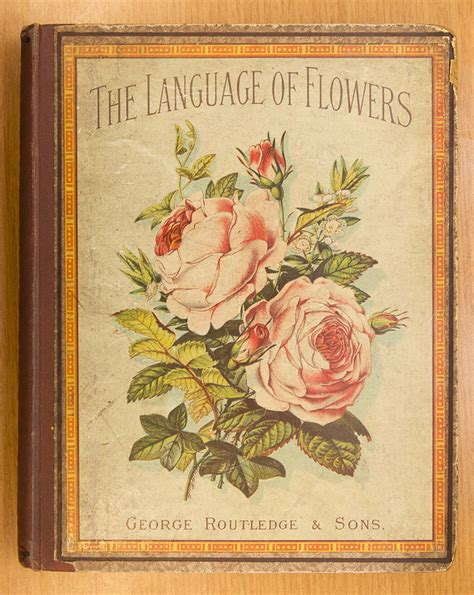 the digger and the flower books the language of flowers cover my chicago botanic garden