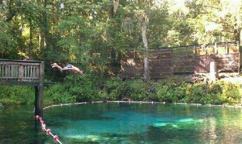 fanning springs state park jumping platform fanning spring picture of fanning