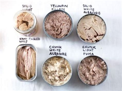 what is light tuna a quick guide to buying better canned tuna