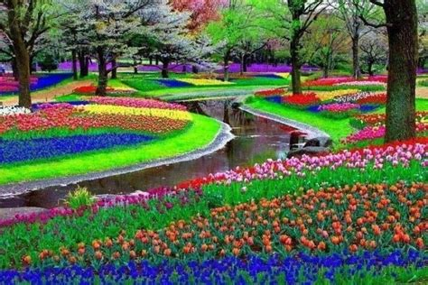 Keukenhof Flower Gardens Keukenhof Garden Lisse Garden Of Europe