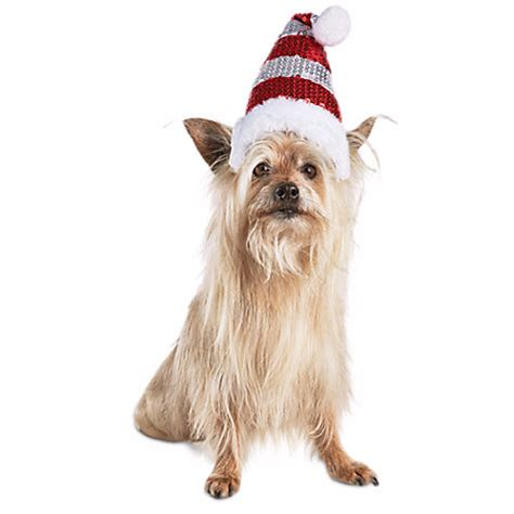 santa hats for dogs dress up your pet in costumes from petco