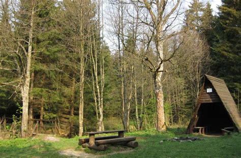 schutzh 252 tte mit feuerstelle im harz - Feuerstellen Harz