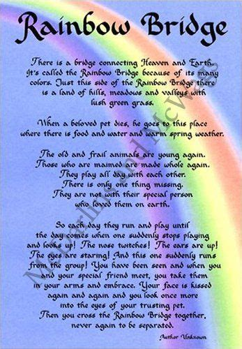 rainbow bridge poem for dogs rainbow bridge memorial wall decor poem pet saying bereavement