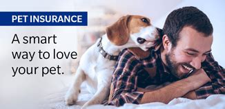Pet Insurance Meme - careers at farmers farmers insurance