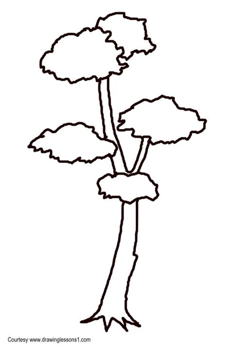 tree drawing simple simple tree sketches images www imgkid the image