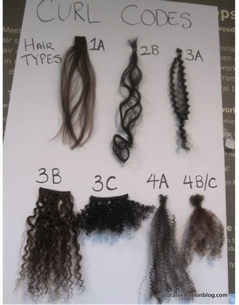 Texture Of Hair Types by Hair Typing The Confusion The Controversy