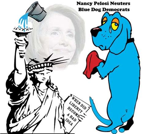 blue democrat nancy pelosi neuters blue democrats