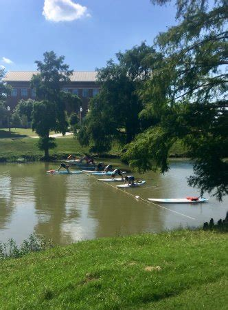 paddle boat rentals waco tx pura vida paddle waco all you need to know before you