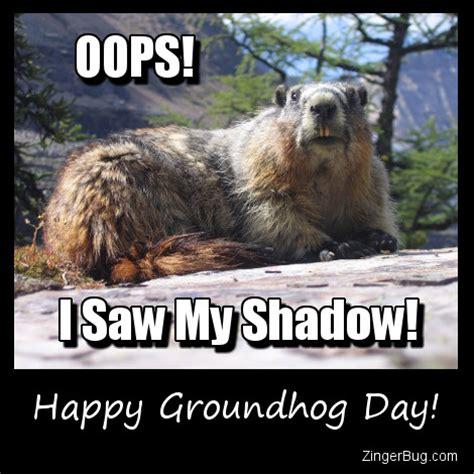 groundhog day slang meaning groundhog saw his shadow glitter graphic greeting