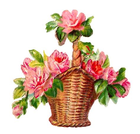 Flower Basket by Antique Images Flowers Pink Basket