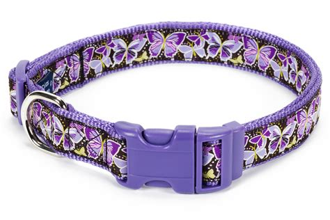puppy harness and leash douglas paquette ribbon collars leashes and harnesses