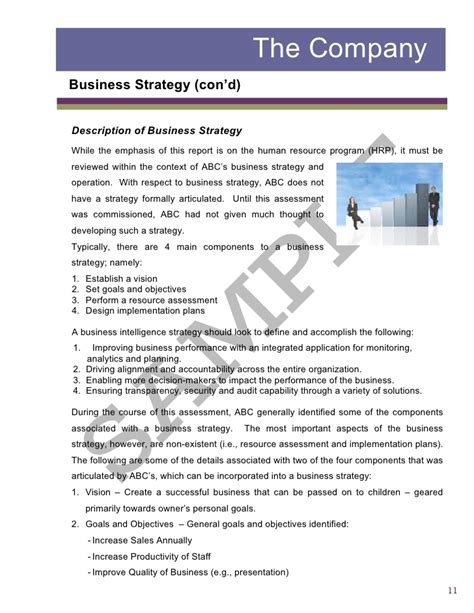 business strategy report sle sle2 report business assessment