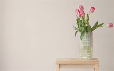 flower on table flowers pink tulips vase table 1179009