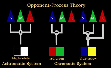 opponent process theory of color somebloodyweird how to see impossible colors imaginary